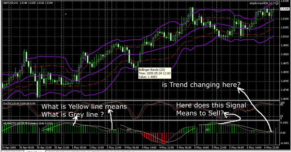 Forex strategies revealed simple
