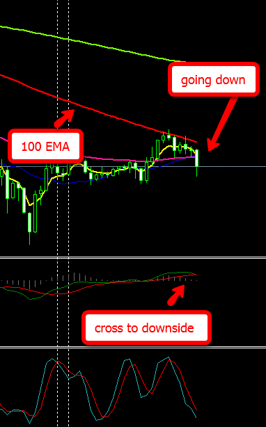 Binary trading system download leak