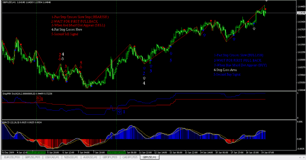 Zovi trend system forex