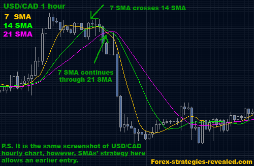Forex trading strategy revealed