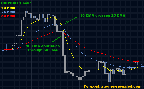 Ema crossover trading algorithm result for forex